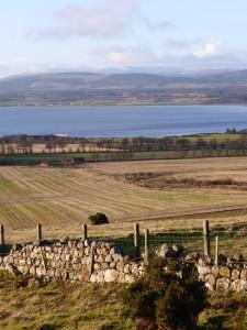 Nigg farmland